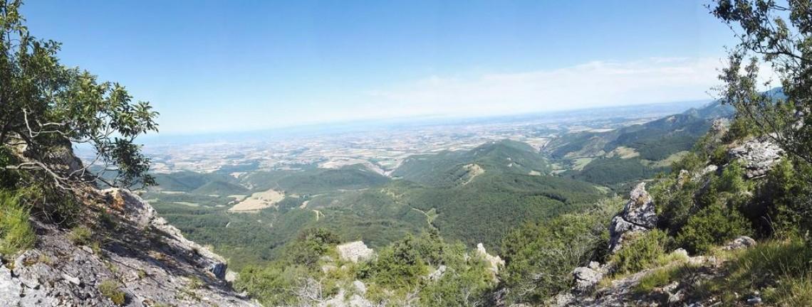Trail de la Raye Saint-Vincinoise